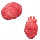 מוח או לב להפחדה