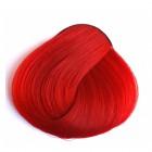 צבע אדום קורל - CORAL RED